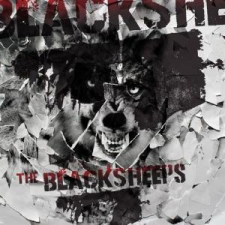 BlackSheeps-04